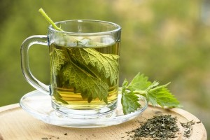 Ease Allergies &amp; Detox with Nettle Tea